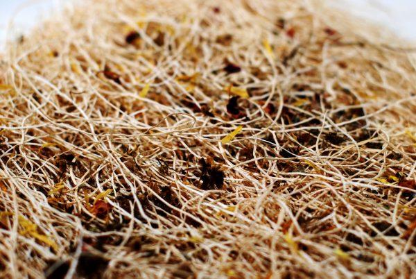 chicken nest pads herbs