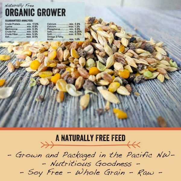 organic poultry grower feed
